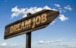 """Wegweiser zum """"Dream Job"""""""