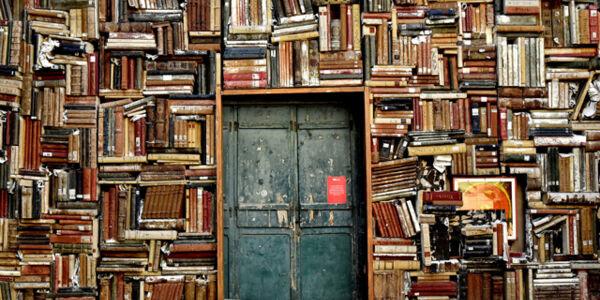Bücherwand umrahmt eine alte Tür